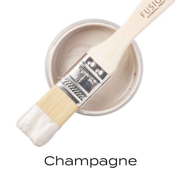 metallic champagne paint