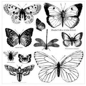 butterflies stamp
