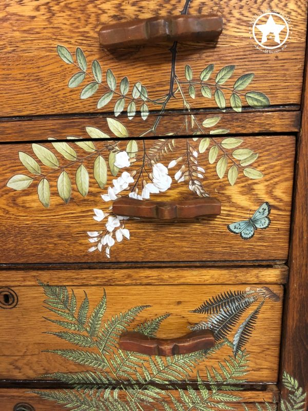 blue star fern chest 2 Fronds Botanical Transfer