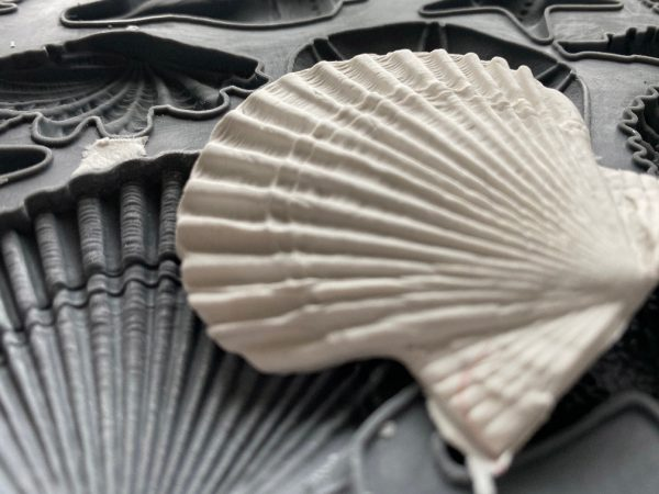 seashore mould shot 3 1 Sea Shells Mould