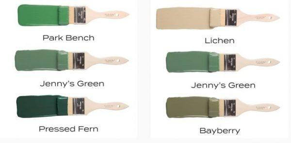 Jenny's green comparison
