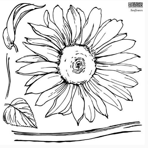 sunflower stamp page 2